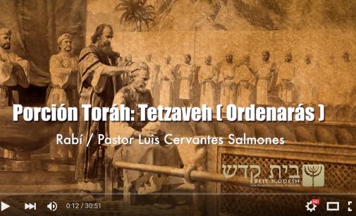 Porcion #20: Tetzaveh / Ordenaras