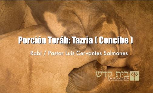 Porción #27: Tazria / Concibe