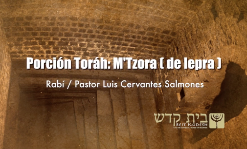 Porcion #28: Metzora / De Lepra