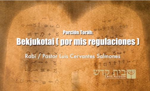 Porción #33: Bejukotai / Por mis Regulaciones