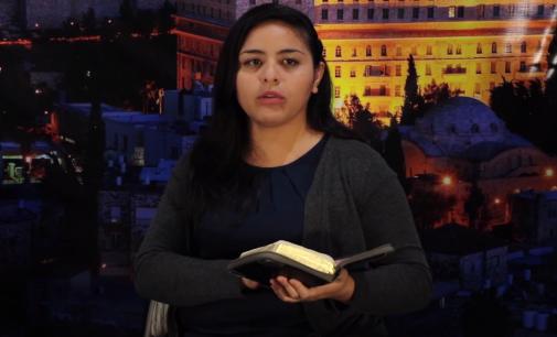 Shabbat Torah #2: Noé