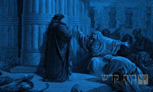 Shabbat Torah #15: Bo / Ve