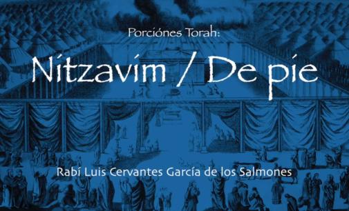 Shabbat Torah # 46: Nitzavim / De Pie