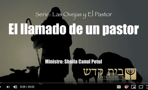 """"""" El llamado de un pastor"""".  Serie: Las Ovejas y El Pastor, #3"""