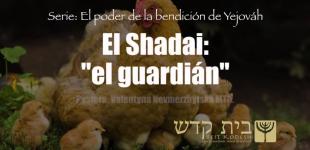 """El Shaddai ""El Guardian"""